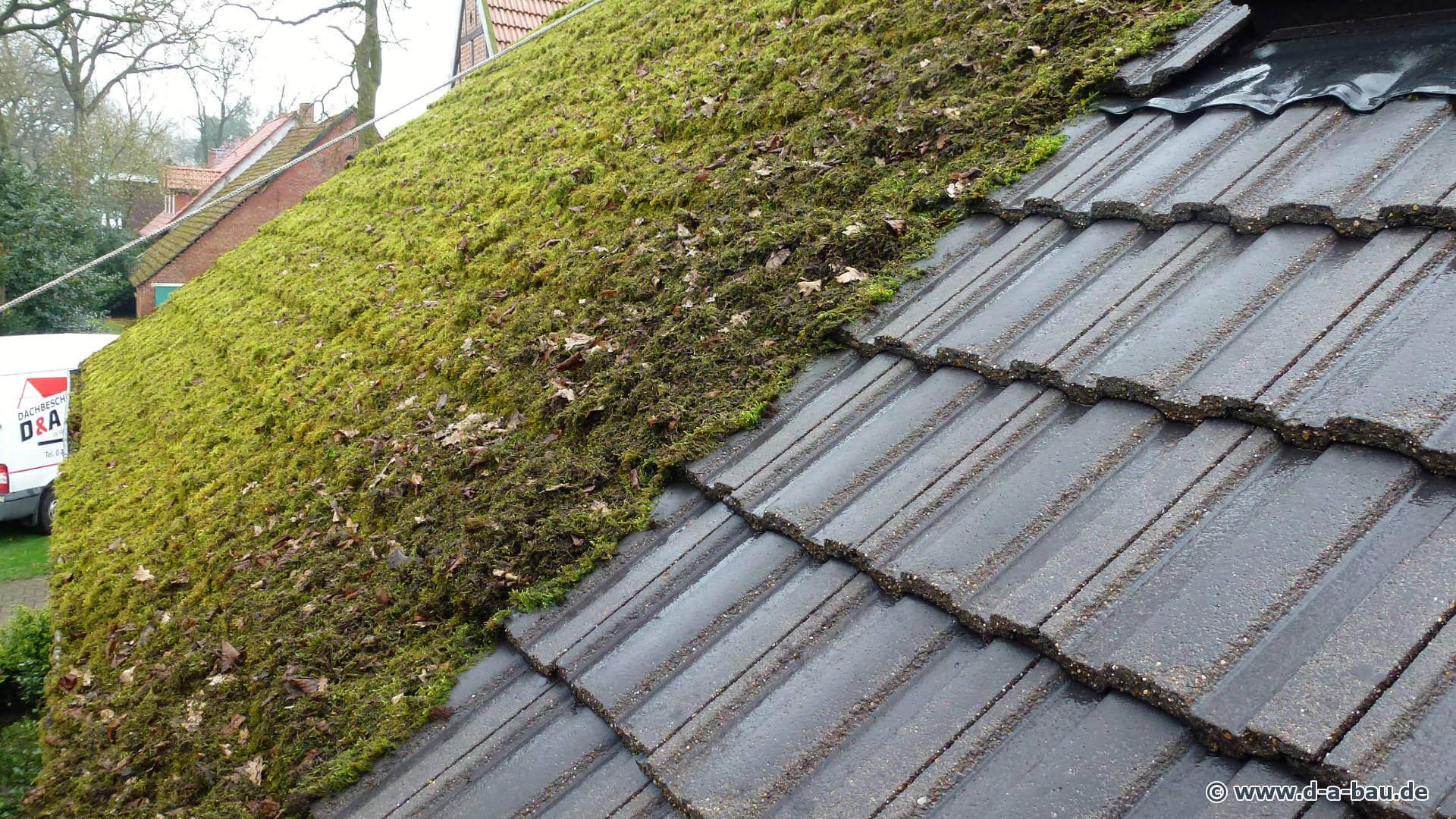 dachreinigung d und a bau reinigt ihr dach gr ndlich von. Black Bedroom Furniture Sets. Home Design Ideas